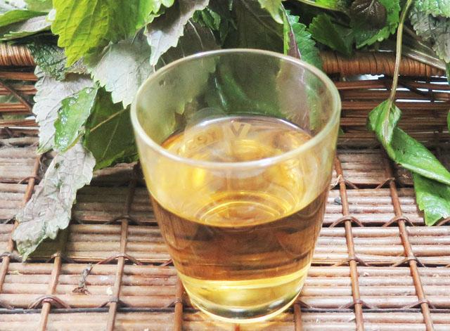 uống-trà-bằng-lá-tía-tô
